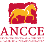 Logo_ANCCE_alta-150x150