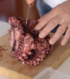 Cutting up the octopus